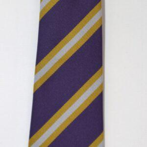 38) Hall Park Tie