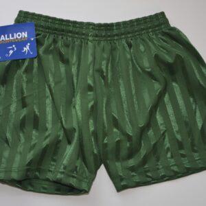 61) Shadow Shorts Green