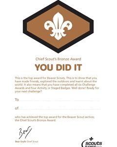 191 Bronze award certificates