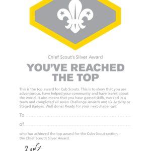 192 Silver award certs