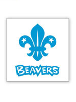 Beavers: Activity Badges